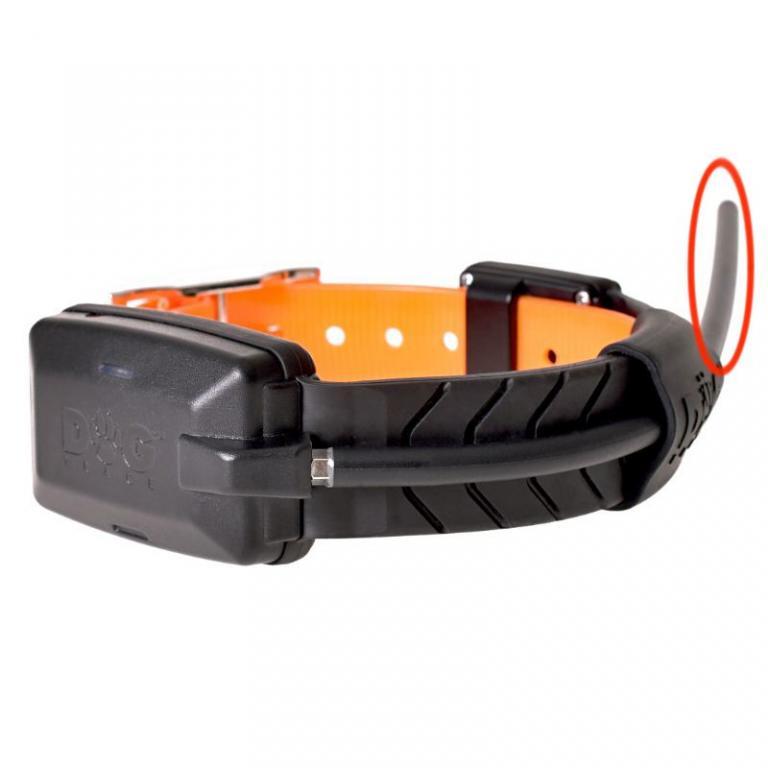 Antenne de Collier Dog Trace X20