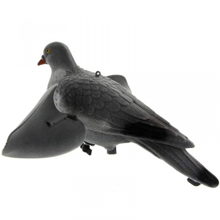 Appelant pigeon ailes tournantes