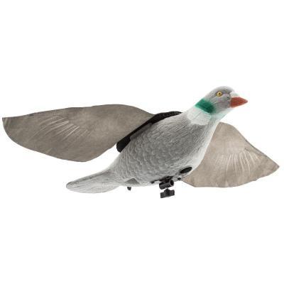Appelant pigeon ailes animées