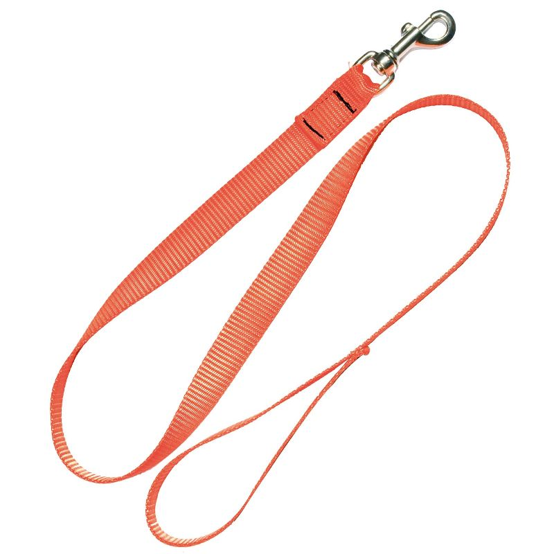 Laisse sangle en nylon orange fluo d une longueur de 120 cm