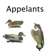 Appelant
