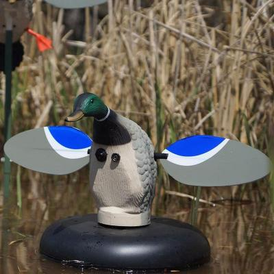 Canard colvert Floater Mojo