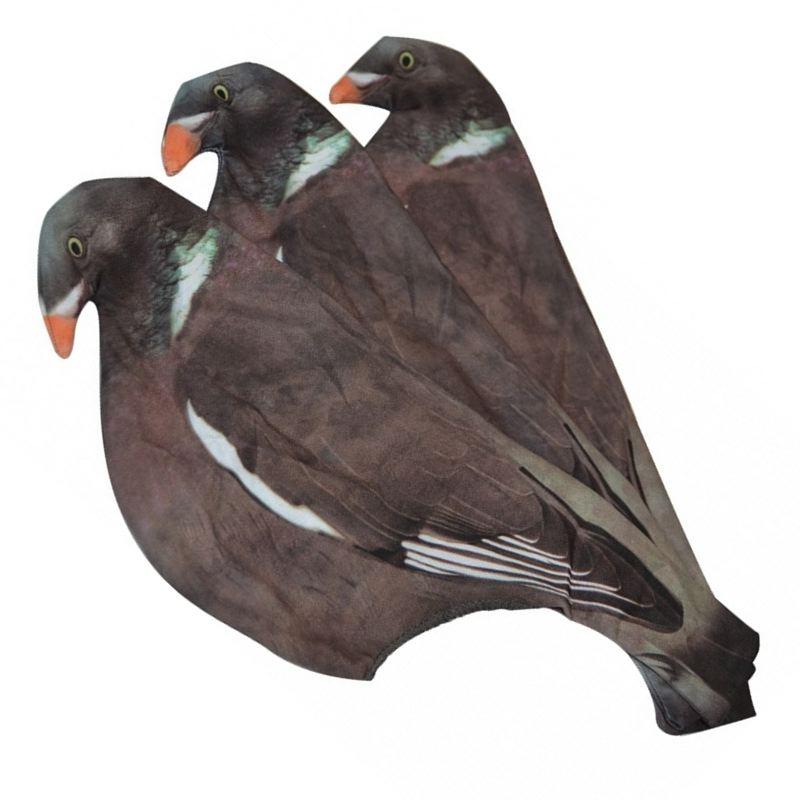 Chaussette appelant pigeon mieux que la peinture
