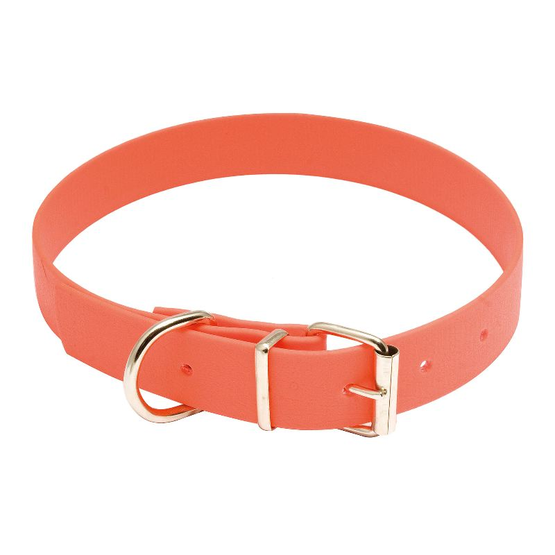 Collier chien de chasse biothane country orange country