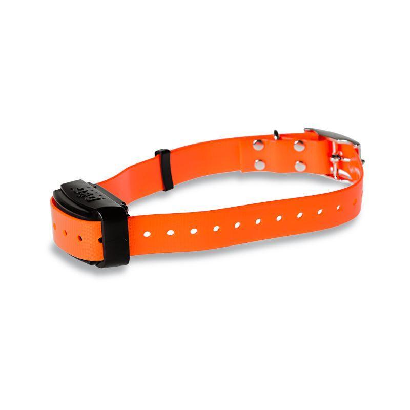 Collier supplémentaire de dressage électronique Dog trace Pro