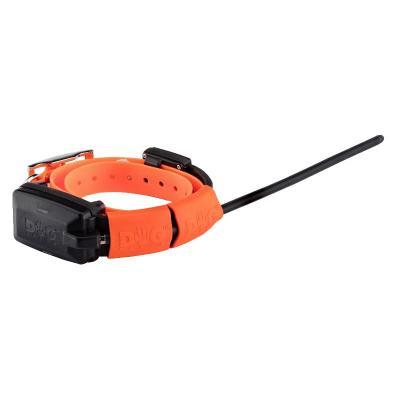 Collier supplémentaire pour Dog Trace X30T