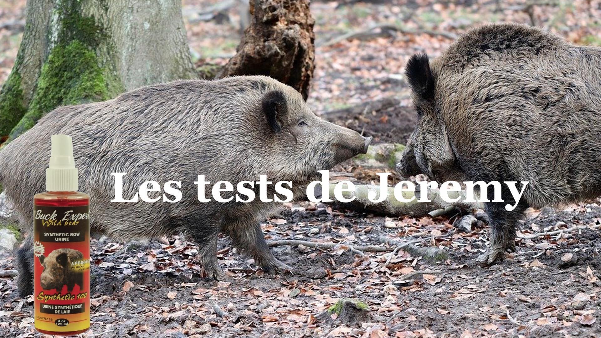 Les tests de jeremy urine synthe tique de laie en chaleur