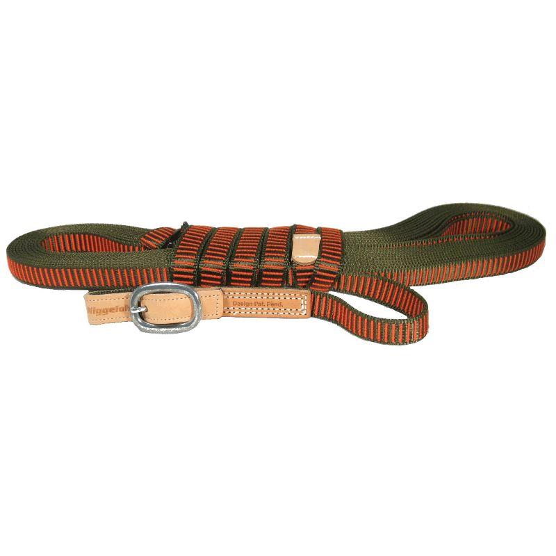 Longe pour chien de sang niggeloh 1 30m ou 2m de longueur