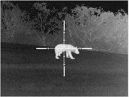 Lunette de tir pour la nuit