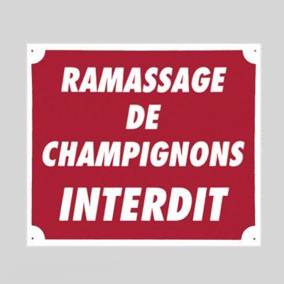 Plaque de signalisation RAMASSAGE INTERDIT